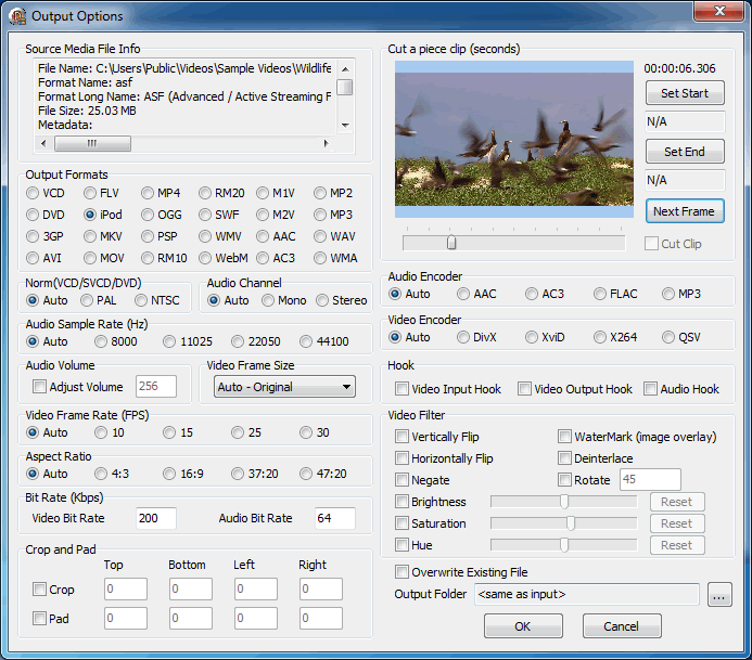 Option Form Screenshot of Video Converter Demo - Delphi FFmpeg VCL Components