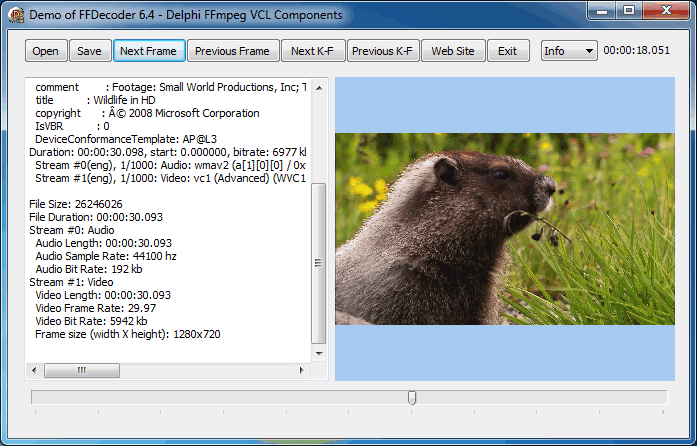 Screenshot of Video Decoder Demo - Delphi FFmpeg VCL Components