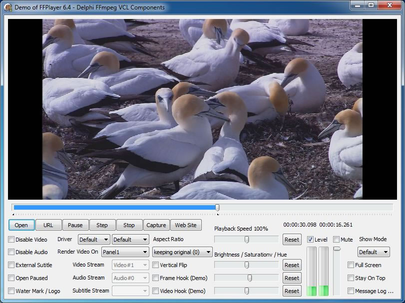 Screenshot of Video Player Demo - Delphi FFmpeg VCL Components